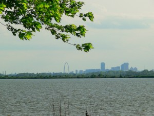 St Louis Skyline