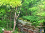 Fern Clyffe State Park