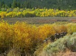 Caribou National Forest, Idaho