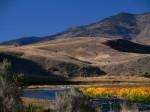 P1230975Yellowstone National Park, Wyoming