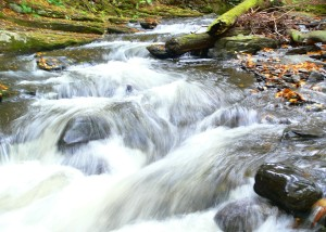 Dingman's Falls area, Delaware Watergap, PA
