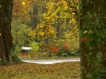 Scenic Hwy 60, West Virginia