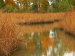 Colonial Parkway, Colonial National Historic Park