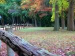 Colonial National Historic Park Virginia