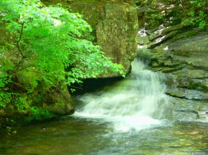 Azalea Falls