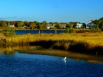 Marsh lands at Colonial Acres Beach, West Yarmouth