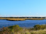 Marsh lands at Seagull Beach, West Yarmouth