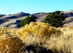 Great Sand Dunes, Great Sand Dunes National Park Colorado