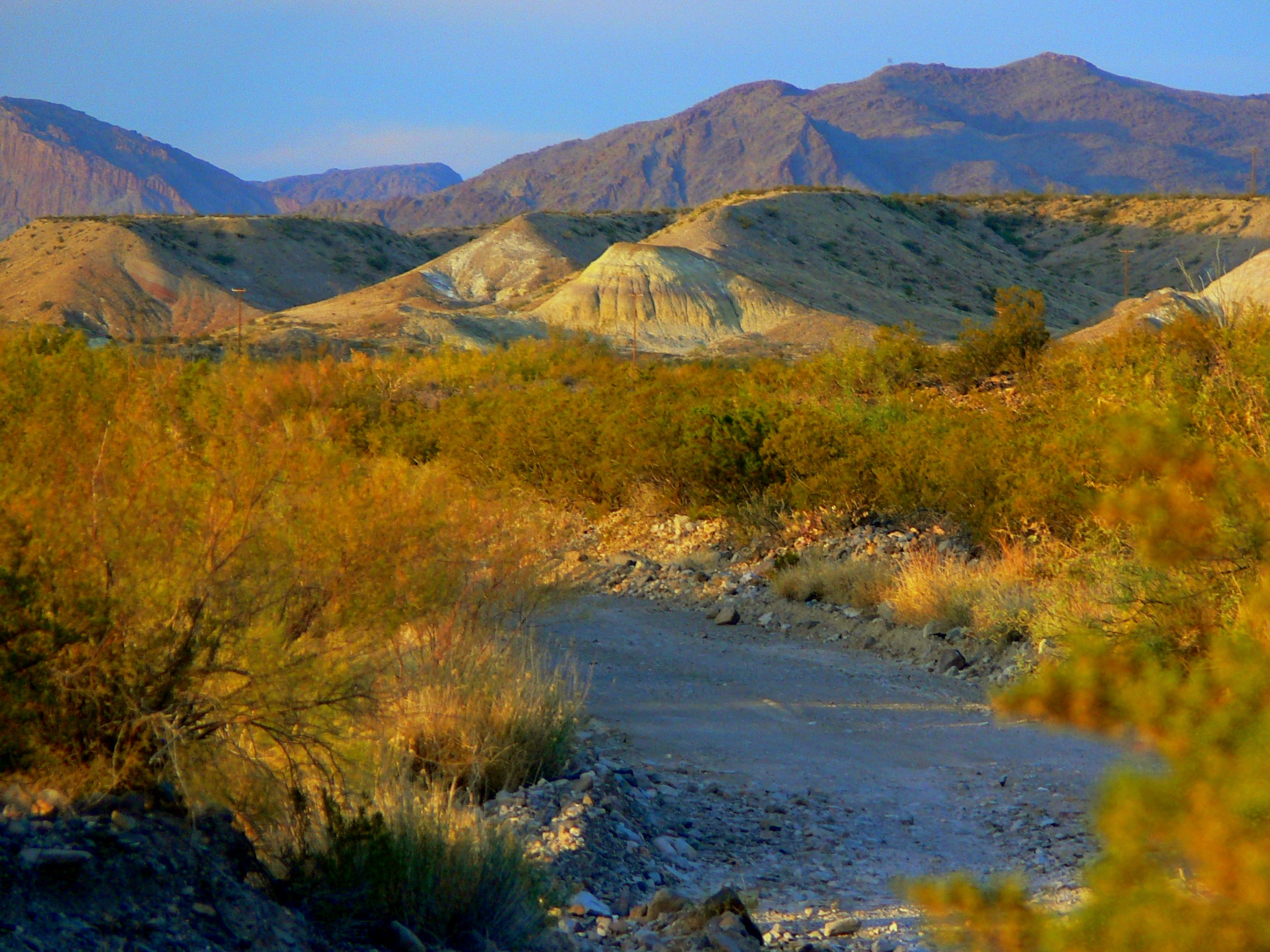 big bend national park chat sites Find great camping in and around big bend national park, texas read trusted reviews of big bend national park rv parks & campgrounds from campers just like you.