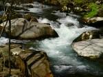 Great Smoky Mountains National Park - North Carolina