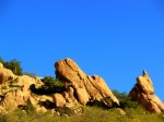 Saguaro Nationa Park East, AZ