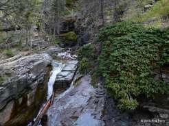 McDonald Creek, Glacier National Park, MT